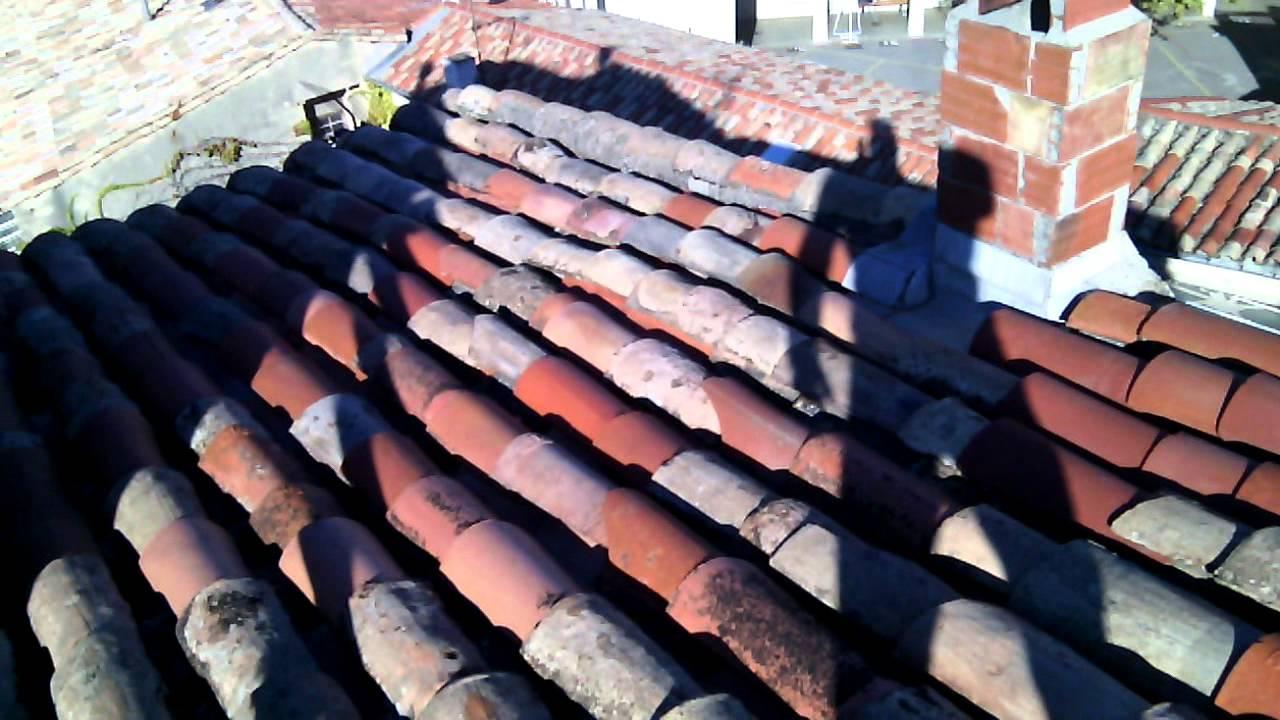 anti mousse toiture point p excellent carrelage terrasse exterieur point p point p d point p. Black Bedroom Furniture Sets. Home Design Ideas