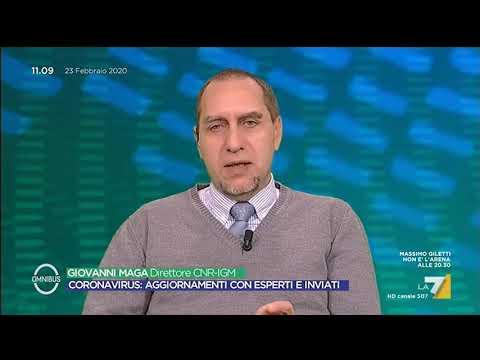 Aggiornamento Coronavirus - Giovanni Maga (Direttore CNR-IGM)