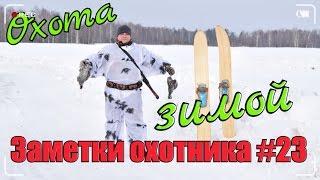 Охота на рябчика зимой 2017