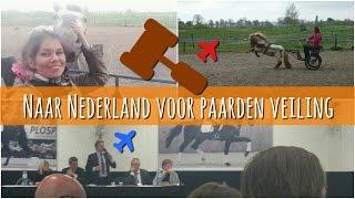 #VLOG | Koop Ik Een Nieuw Paard In Nederland? DEEL 1