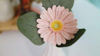 paperflower gerbera daisy