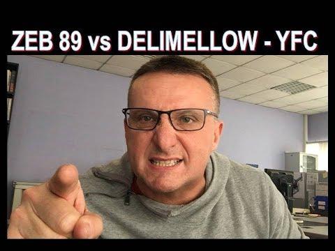 Zeb89 vs  Dellimellow-Yotube fa cag..re ,  ecco cosa ne penso !!!