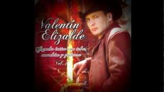 Valentin Elizalde - Esta Cobardia (con acordeón, tuba y guitarra.)