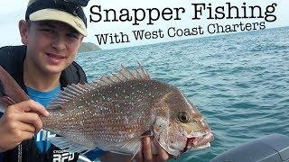 Snapper Fishing Raumati | Big Snapper & Big Kahawai | West Coast Charters