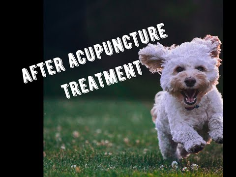 Before and after acupuncture