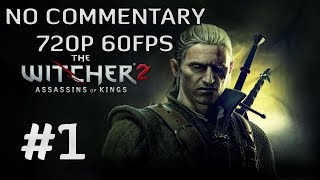 The Witcher 2: Assassins of Kings Enhanced Edition #1