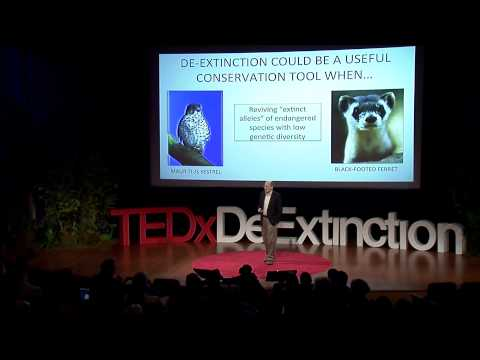 De-extinction: a game-changer for conservation biology: Stanley Temple at TEDxDeExtinction