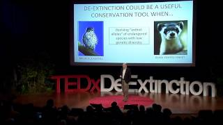 De-extinction: a game-changer for conservation biology: Stanley Temple at TEDxDeExtinction thumbnail