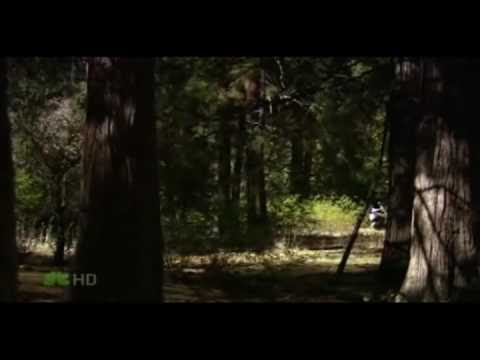 The Office New Promo: Michael Scott Goes Into the Wild
