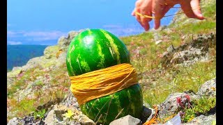 WATERMELON VS 5,000 RUBBER BANDS AND MORE