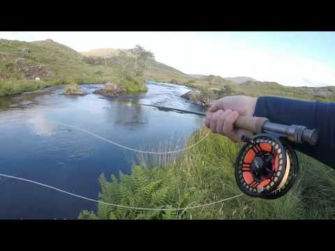 Brown Trout Fly Fishing Mountain Lake And River