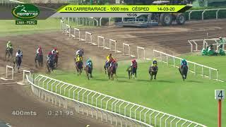 Vidéo de la course PMU HANDICAP 2 YO & UP