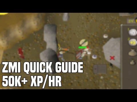 ZMI Quick Guide - 50k+ xp/hr