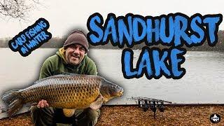 Carp Fishing In Winter 2019 - Sandhurst Lake - Vlog #3 😀