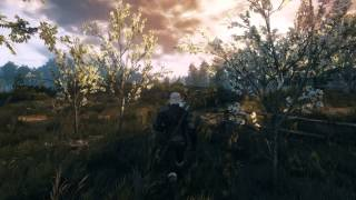 The Witcher 3/GTX 970 OC/Ultra(No HairFX)/1080P (2880x1620 DSR)/E3FX Mod/ FPS Count/ Full Day Cycle