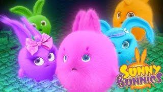 Videos For Kids | Sunny Bunnies- MIDNIGHT MYSTERY| SUNNY BUNNIES | Funny Videos For Kids