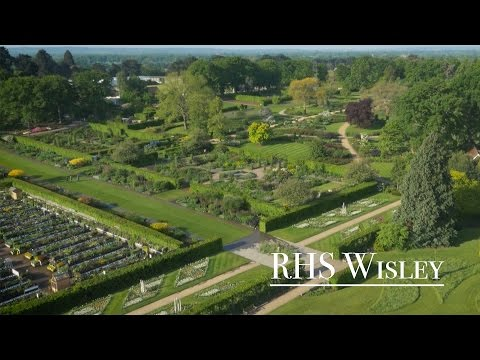 RHS Wisley   final promo Elevate