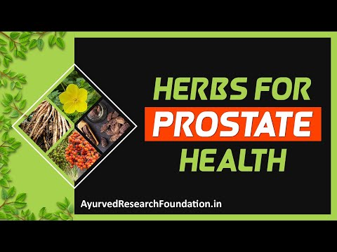 Ayurvedic Herbs for Prostate Health That Improve Function
