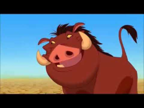 timon si pumba hula romana from YouTube · Duration:  21 seconds