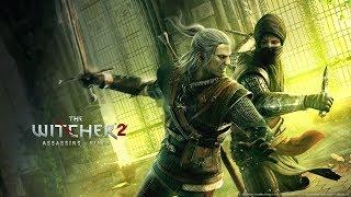 """Квест """"Заказ на гаргулий"""" - The Witcher 2"""