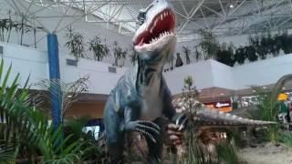 Shoping interlagos aventura com os dinossauros muito bom
