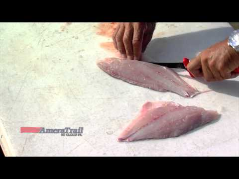 How Long Will Fish Last In The Freezer?