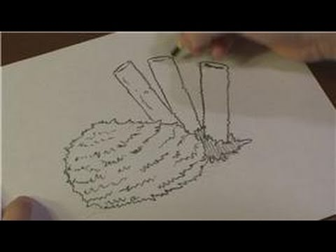 Drawing Lessons How To Draw A Sea Sponge Youtube