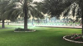 Tareq Alsaadi between palm trees gaui nitro طارق السعدي