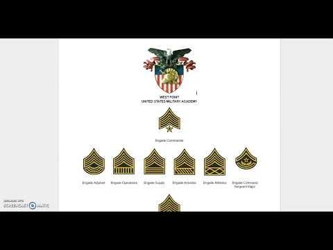 US Military Academies Rank Insignia