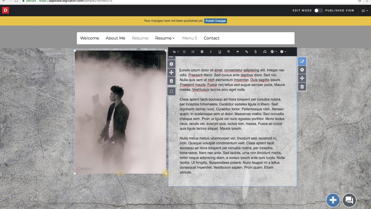 persuasive writer site online