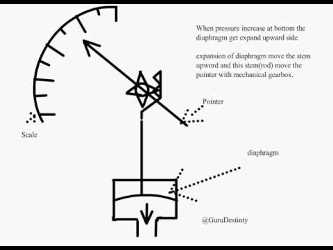 Diaphragm Pressure Gauge Animation Youtube. Diaphragm Pressure Gauge Animation. GM. Diagram Of A Diaphragm At Scoala.co