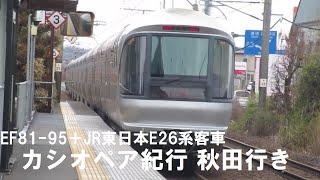 E26系カシオペア紀行秋田行(EF81-95牽引)