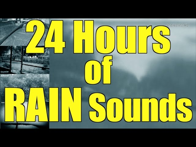 Heavy Pouring Rain And Thunder 24 Hours Rain Rain Sounds Sleep Sounds Youtube