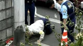 捕獲の瞬間 東京の住宅街に こんな野生動物が