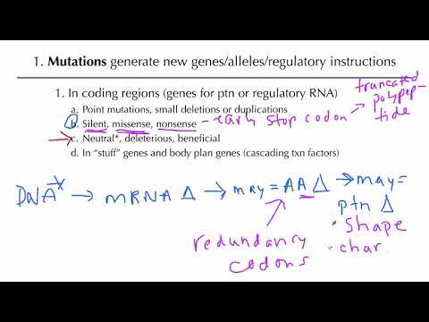 Population Genetics: Generating Genetic Variation