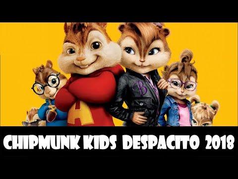 Chipmunk Kids  Despacito 2018
