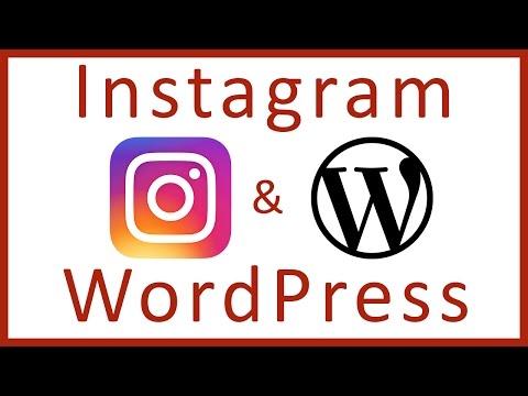 how-to-add-an-instagram-feed-to-wordpress-website---wordpress-plugins