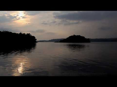 Nature Sounds- A Short Meditation by the Lake Shore-Lapping Water-Birds Singing
