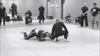 Kwan Lee Systema Seminar Amsterdam 2016