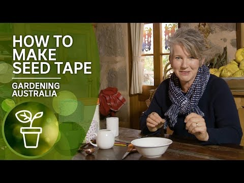 how-to-make-seed-tape-for-easy-sowing