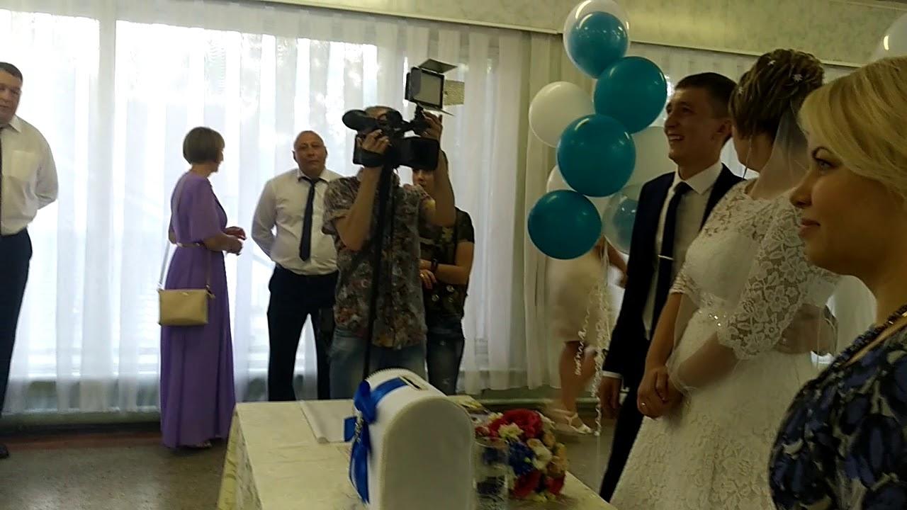 поздравление от 12 летнего брата на свадьбу путники имеют пластинчатые