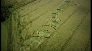 Crop Circles Wall of Standing Crop