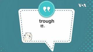 学个词 - trough