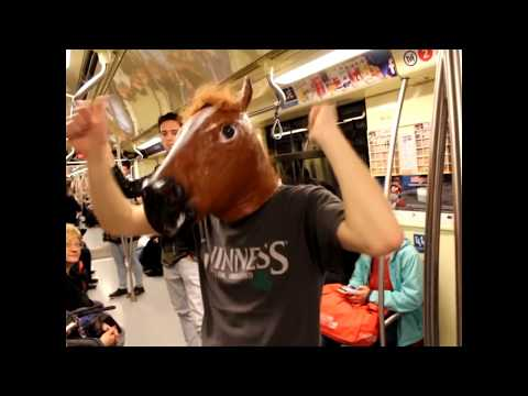 Horsing around in Budapest
