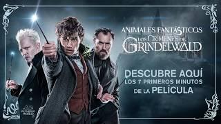 Animales Fantásticos: Los Crímenes de Grindelwald - Primeros Minutos de la Película