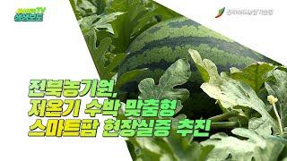 전북농기원, 저온기 수박 맞춤형 스마트팜 현장실증 추진