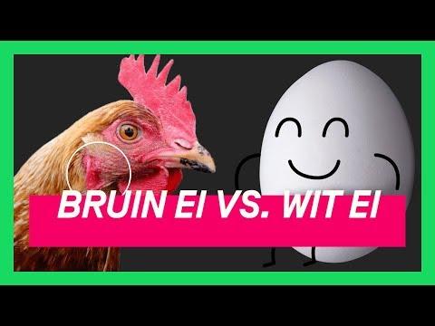Waarom je beter witte eieren kan kopen | KEURINGSDIENST VAN WAARDE KORT #16