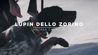 Lupin dello Zorino | Mountain Hunters