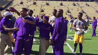 Fight breaks out between LSU-Florida players