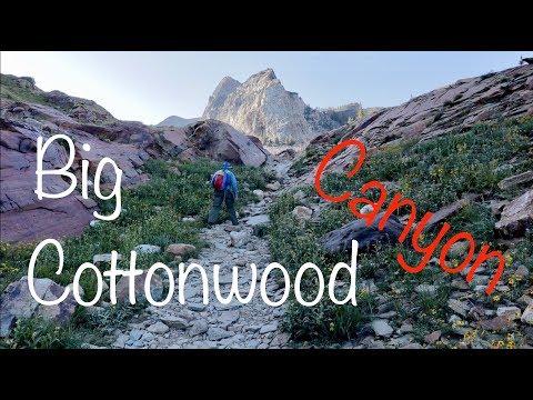 Big Cottonwood Canyon Lake Blanche Hike Fish And 3 Bull Moose